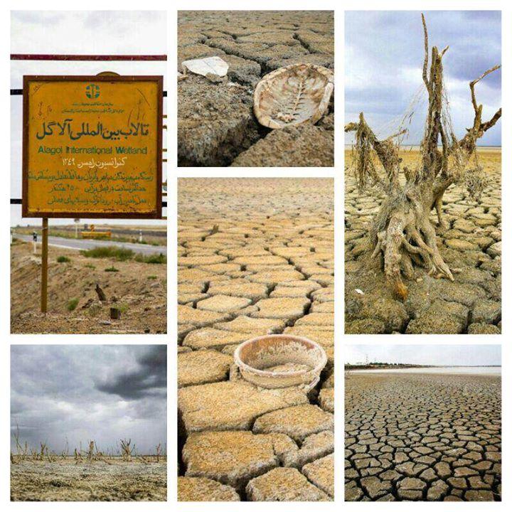 تالاب آلاگل، آجی گول … تورکمنصحرا خشک شدند!